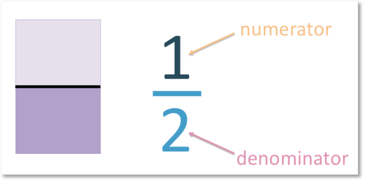 the numerator of one half is 1