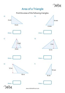 area of a triangle worksheet pdf
