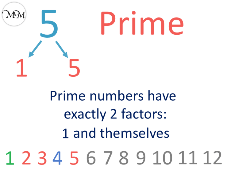 5 is a prime number