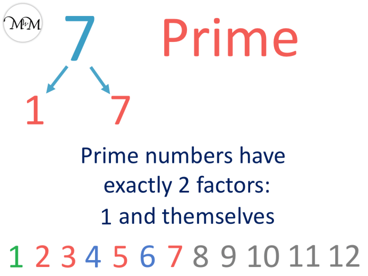 7 is a prime number