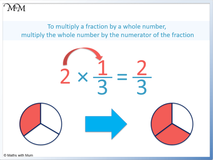 model showing a fraction multiplied by a whole number 2 thirds