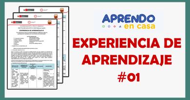 EXPERIENCIA DE APRENDIZAJE #1 – Aprendo en Casa