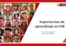 Experiencias de aprendizaje 2021 en EIB – MINEDU