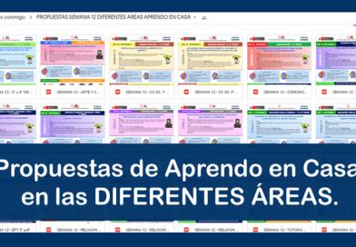 Propuestas de Aprendo en Casa en las DIFERENTES ÁREAS.