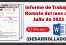 Informe de actividades y reporte del trabajo remoto del mes de Julio 2021.