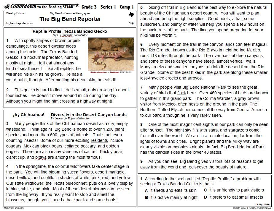 Reading Staar Prep Texas Reading Staar Test Review