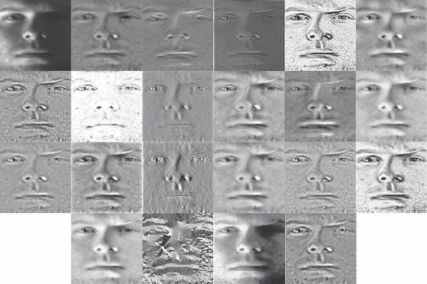 The INface toolbox v2.0 for illumination invariant face recognition