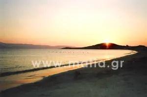 naxos 15 - Νάξος - Κυκλάδες - Αιγαίο - Ελλάδα