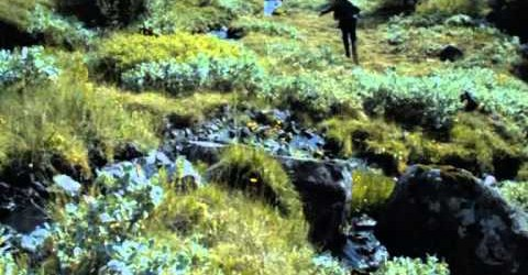 Game of Thrones: Breaker of Chains – Season 4 / Episode 3 – 2014