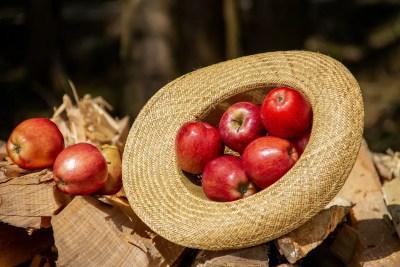 red apples 1564682027 - Μήλα κόκκινα, της Ελένης