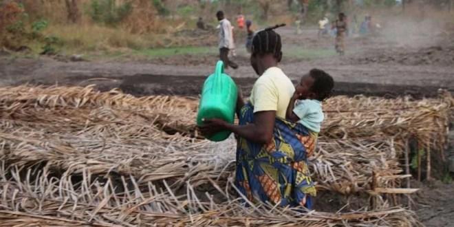 Grâce aux PAM et FAO : Des Organisations Paysannes renforcent la sécurité alimentaire à Kabalo