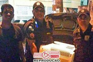 PMs compram ar-condicionado para menino doente no Rio 84