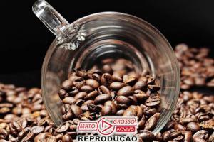 Dois compostos do café podem combater Parkinson e demência 71