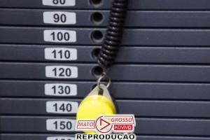 Pra reduzir infartos ou AVC, levante pesos, recomenda estudo 79