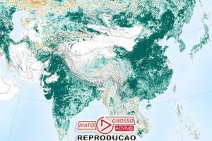 Mundo está mais verde do que há 20 anos graças a 2 países 81