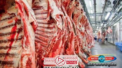 Exportações de carne devem fechar 2019 com resultado recorde 14