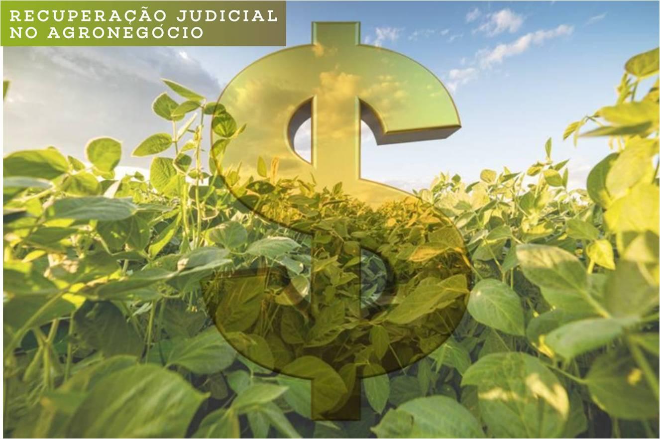 Emenda de senador mato-grossense ameaça recuperação judicial de produtores rurais