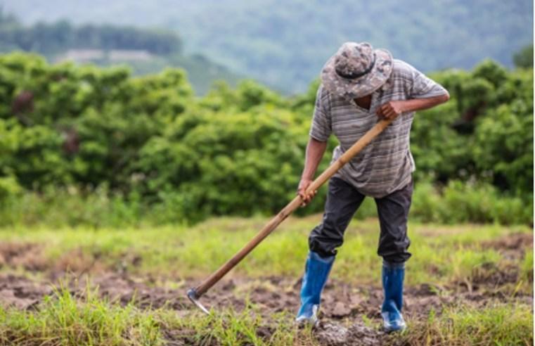 Zoneamento do Vale do Araguaia e Guaporé podem afetar economia da região, segundo produtores e Fórum Agro MT