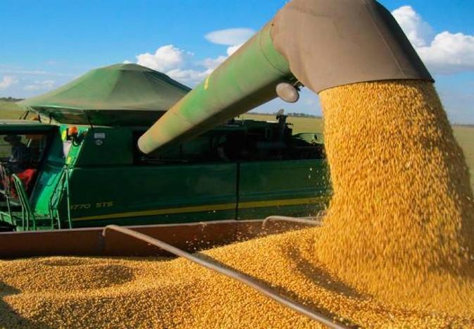 Aproveitando a alta da soja, produtores de MT estão negociando contratos antecipados do grão