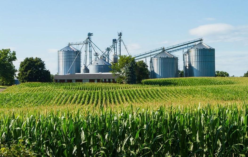 'Precisamos ser donos do que produzimos', afirma presidente da Aprosoja sobre armazenagem de milho
