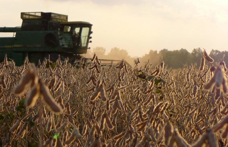 Com cenário positivo no agronegócio, alta das commodities chama atenção de produtores
