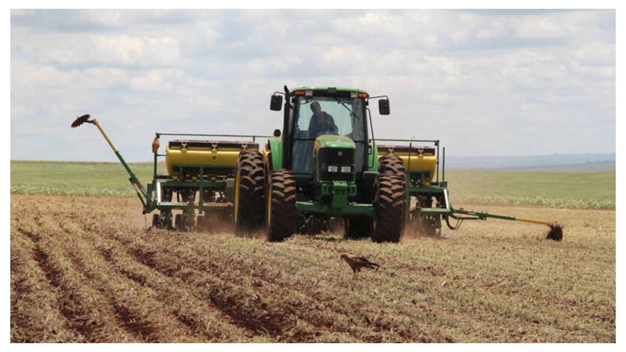 Mesmo à espera das chuvas, MT e mais dois estados lideram plantio de soja no País
