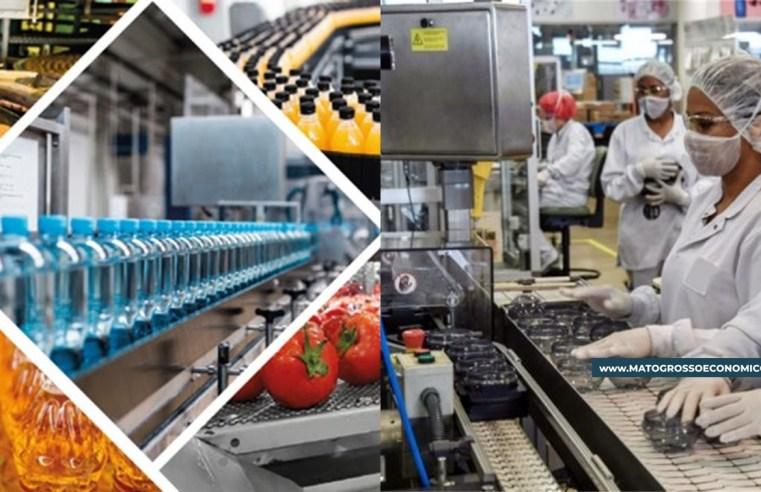 Produção industrial de MT reage em julho, mas segue com saldo negativo em 2021