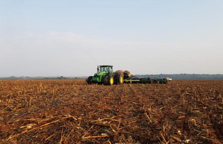 Com MT e PR engrenados, plantio de soja vai a 10% no Brasil