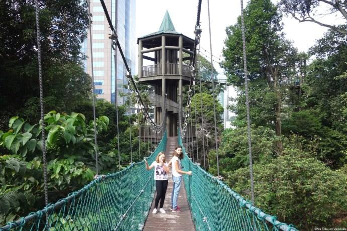 parc pont suspendu