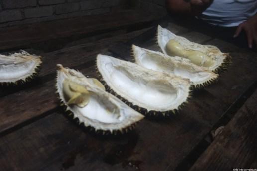 intérieur Durian