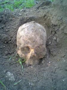 Cada dia se encuentran restos que hay que analizar por si existiese delito