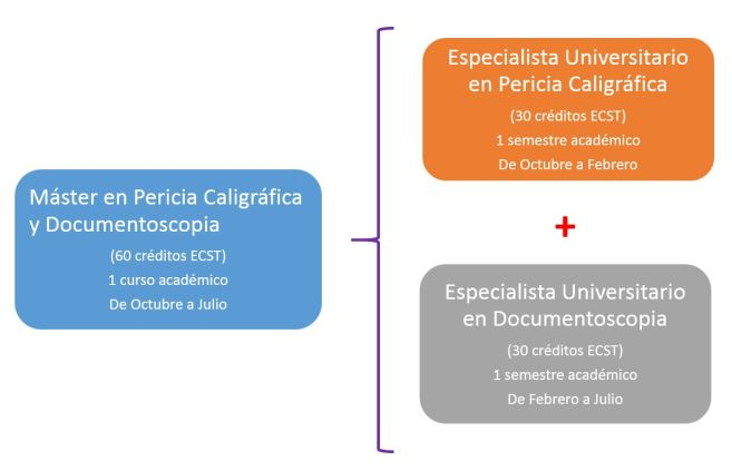 Especialista Universitario en Pericia Caligráfica