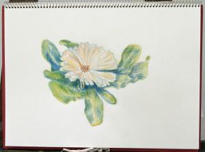 火曜絵画教室|Mさんの作品