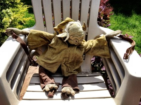 Yoda is retired from OCR.