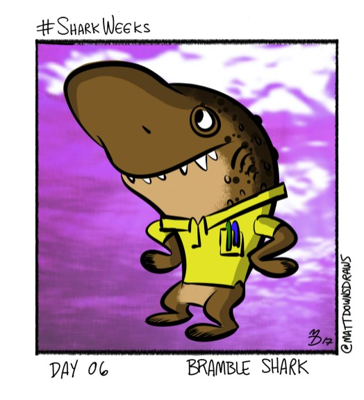SharkWeeks_Day06