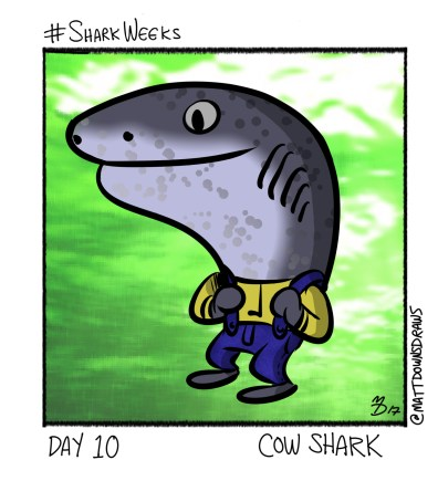 SharkWeeks_Day10