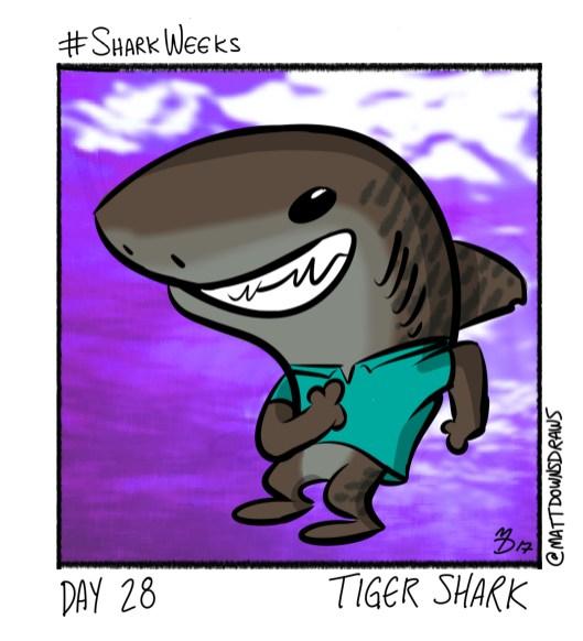 SharkWeeks_Day28