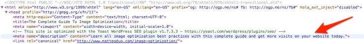 WordPress SEO Plugin meta description code