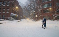 NOTICE: No Snow Dumping