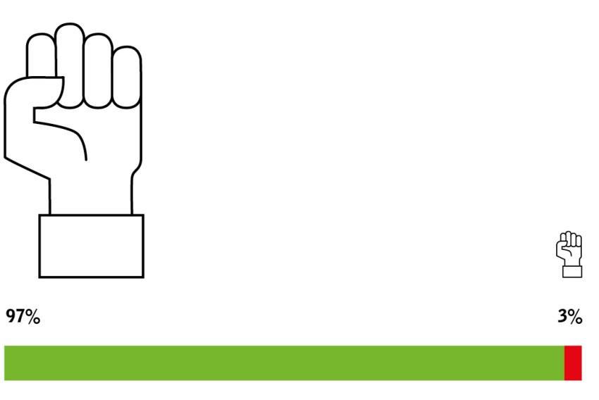 Symbol für 97 % positive Bewertung der Unabhängigkeit der Matthias Brunner AG