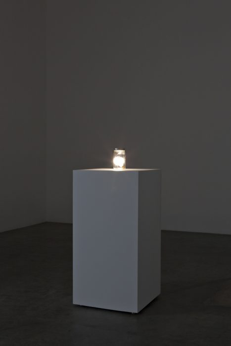 Star in a Jar, 2011 Glass and electronics with pedestal 46.5 x 21 x 21 inches