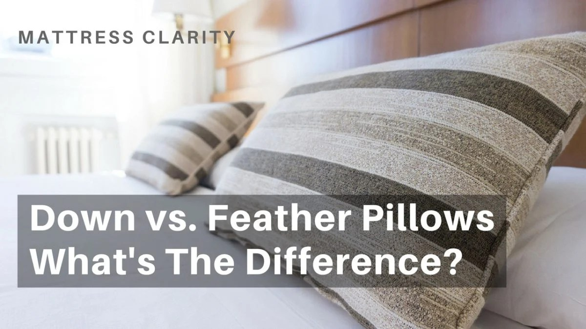 down vs feather pillows what s the