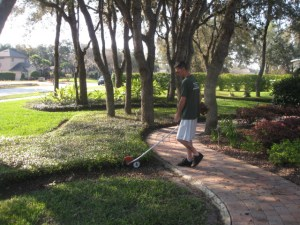 Landscape Architect Longwood Fl