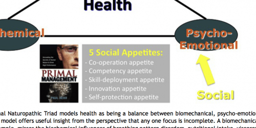 The naturopathic triad of health - with additional recognition of psycho-social factors from an evolutionary point of view.