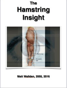 Hamstring insight cover image