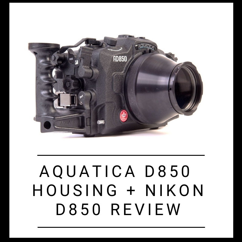 Aquatica D850 housing + Nikon D850 review