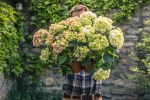 Gärtner/in werden: Ausbildungsfakten