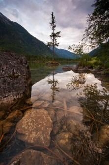 hintersee-baum-spiegelung-berchtesgadener-land-polfilter