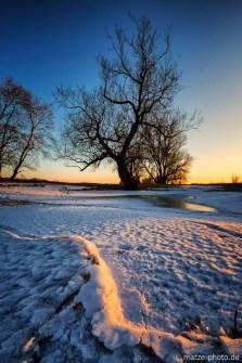 Winter-Baum-Altmark
