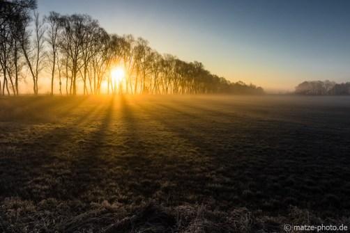 Sonnenaufgang-Altmark-fotografieren